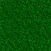 texture pelouse herbe